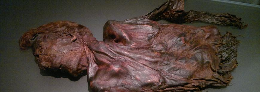 Lessons Learned from Bog Bodies
