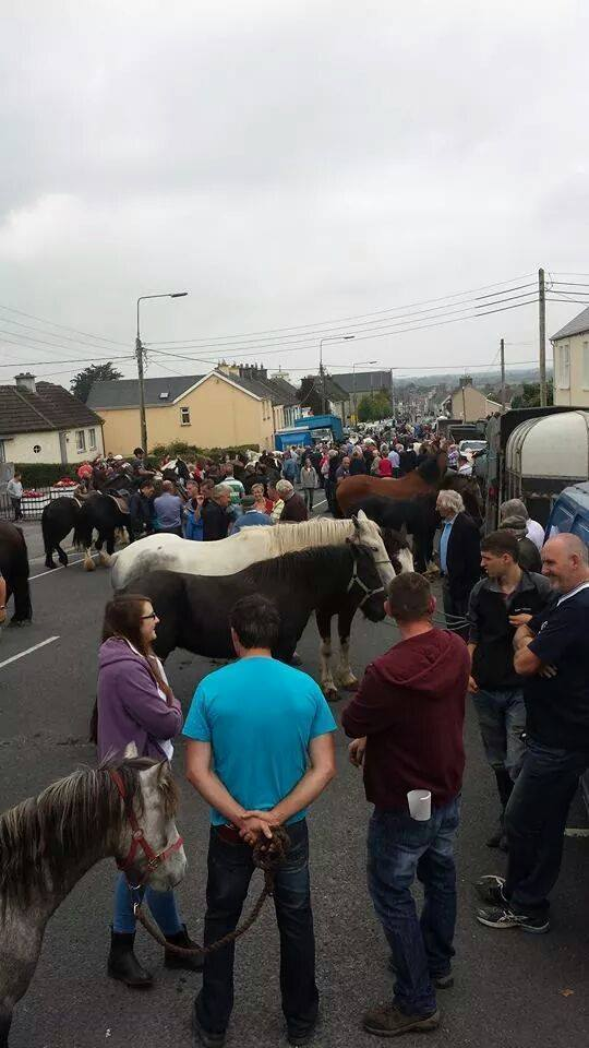 2014 Banagher Horse Fair, smaller, but it DID go ahead!