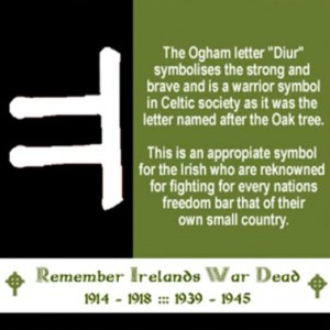 Diur - a cross community symbol for those who dies in the two World Wars?
