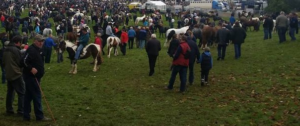 Horse Fair at Ballinasloe in 2015 - Garristown would have looked something like this