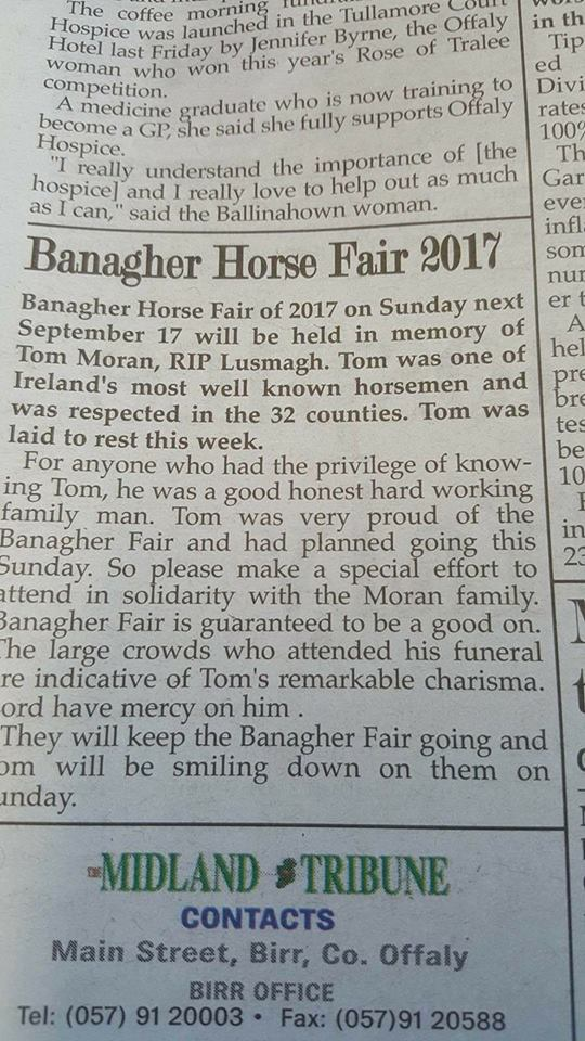 Midland Tribune article on the 2017 Banagher Horse Fair