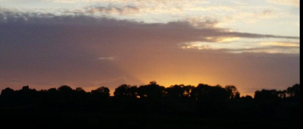 Sun behind the Trees - Legga in Longford, Ireland