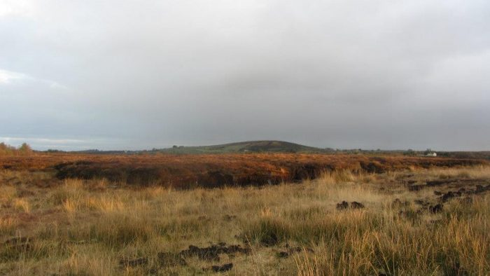 Edenmore Hill and the Edenmore Bog Walk